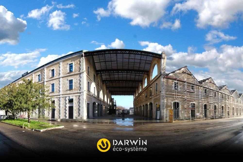 Darwin écosystème